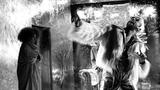 ABSOLUTNO – KABARET O KONCI SVĚTA - Dejvické divadlo