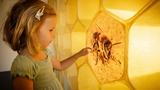 Den otevřených dveří ve Vodním domě a Včelím světě