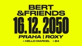 BERT AND FRIENDS (CZ)