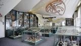 Kultury Austrálie a Oceánie - Náprstkovo muzeum asijských, afrických a amerických kultur