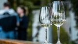 Víno z blízka: Vinaři z Mikulova