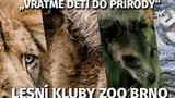 Zoo Brno pořádá prázdninové lesní kluby pro děti