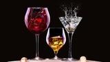 Galadegustace Žofín: Největší výstava vín a destilátů