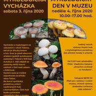 Mykologická vycházka