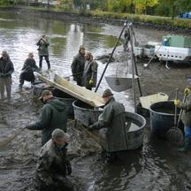V Rožmitále se bude konat tradiční Myslivecko-rybářská slavnost
