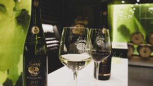 Cesta za vínem i tajemstvím zlatého pokladu do Habánských sklepů