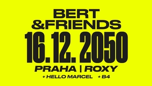 BERT AND FRIENDS (CZ)