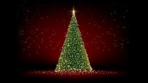 Rozsvícení vánočního stromu 2020 - Litoměřice