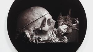 Vanitas. Smrt a umírání jako jeden z významných námětů současného výtvarného umění v Centru současného umění DOX