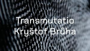 Kryštof Brůha - Transmutatio - Pragovka Gallery POP-UP