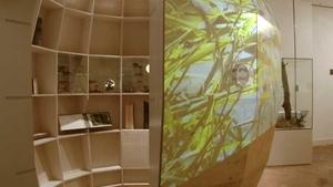 Přírodovědná expozice - Ostravské muzeum