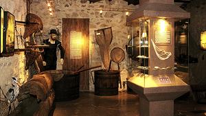 Ryby a rybářství - Prácheňské muzeum v Písku