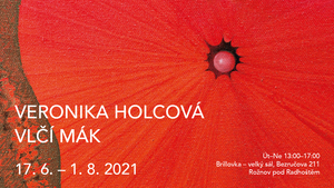 Veronika Holcová - Vlčí mák