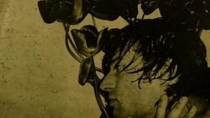 SAMOTA UPROSTŘED DAVU: Charles Baudelaire a české umění
