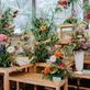 Flora Olomouc připomene léčivou moc přírody i visuté zahrady