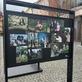 Putovním výstava Kořeny osobností na Ovocném trhu v Praze