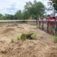 Psouni v Zoo Praha bydlí v novém