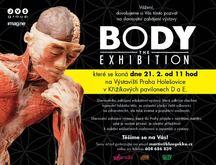 Do Prahy přijede výstava odhalující všechna tajemství lidského těla  Body The Exhibition