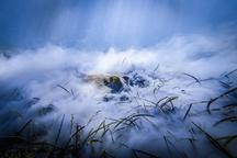 Vítězem třetího ročníku Czech Nature Photo se stal Jan Stria