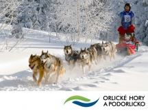 I v letošním roce se Orlické hory a Podorlicko prezentují v Brně