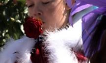 Růža pro krála - Skoronice, Kyjovské Slovácko