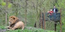 Zoologická a botanická zahrada města Plzně i oblíbený DinoPark