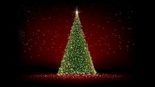 Rozsvícení vánočního stromu 2020 - Cheb