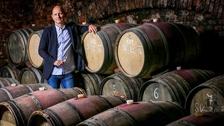 Víno z blízka: Zámecké vinařství Bzenec - osobnost současného vinařství