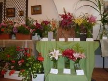 Prodejní výstava květin a umění ve Volyni