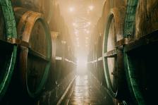 Dny českého piva - Život a pověsti pivovarských sklepů